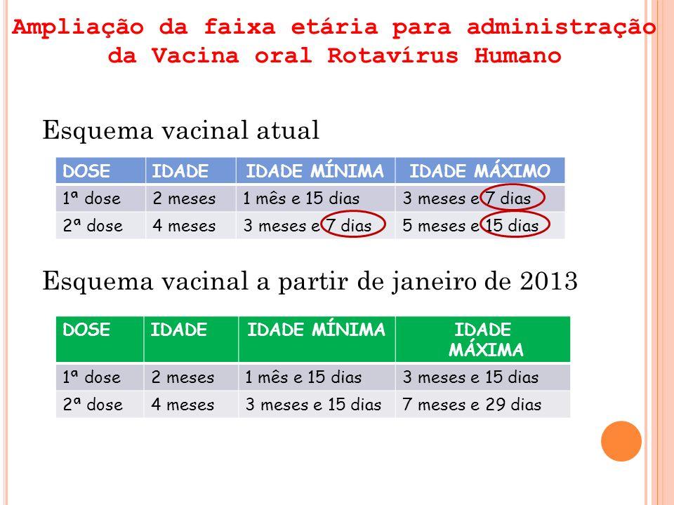 Esquema vacinal a partir de janeiro de 2013