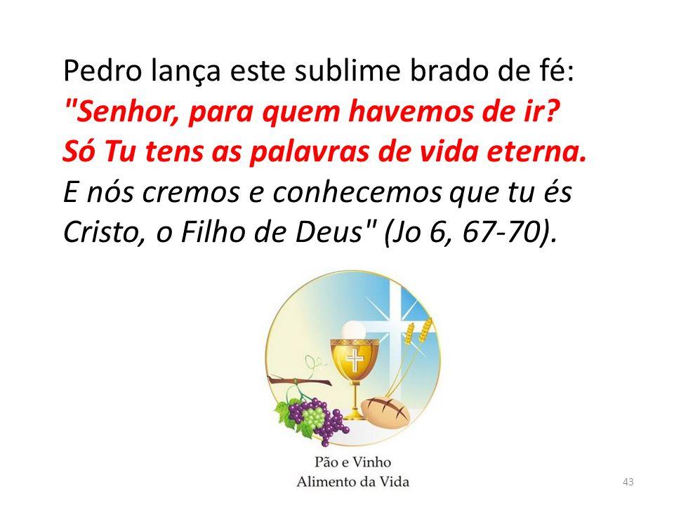 Pedro lança este sublime brado de fé: Senhor, para quem havemos de ir