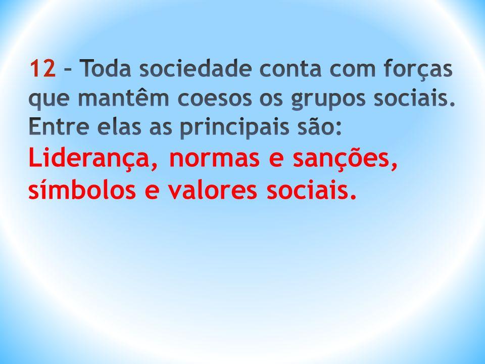 12 – Toda sociedade conta com forças que mantêm coesos os grupos sociais.