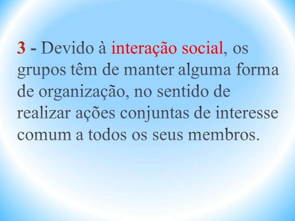 3 - Devido à interação social, os grupos têm de manter alguma forma de organização, no sentido de realizar ações conjuntas de interesse comum a todos os seus membros.