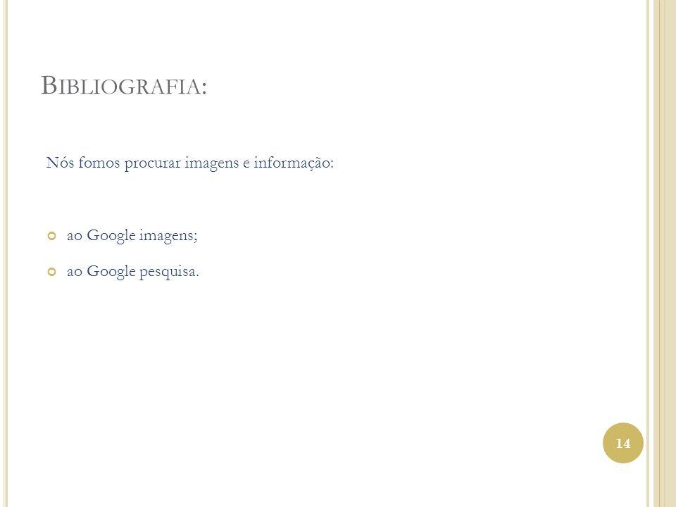 Bibliografia: Nós fomos procurar imagens e informação: