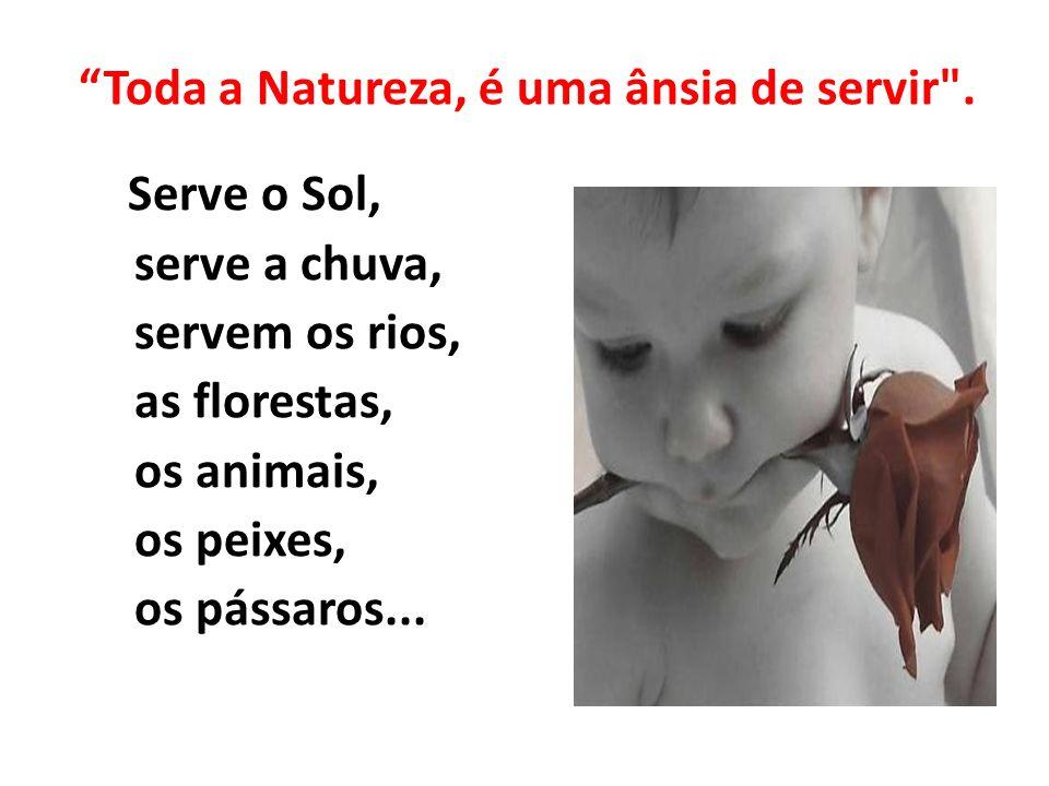 Toda a Natureza, é uma ânsia de servir .