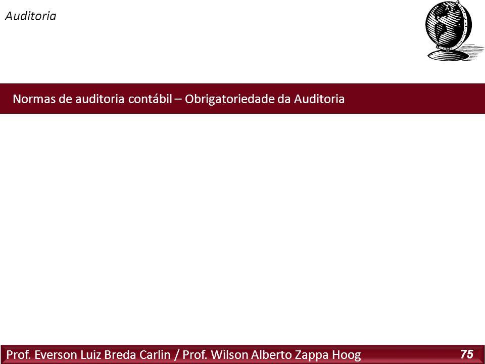 Auditoria Novas Normas Brasileiras de Auditoria: