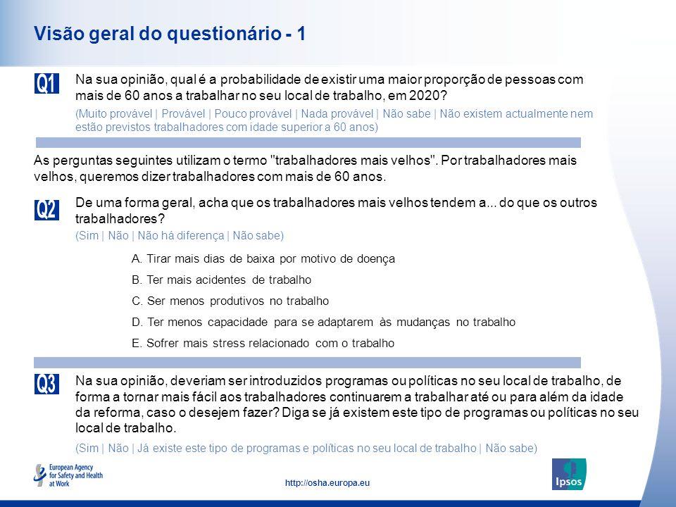 Visão geral do questionário - 1
