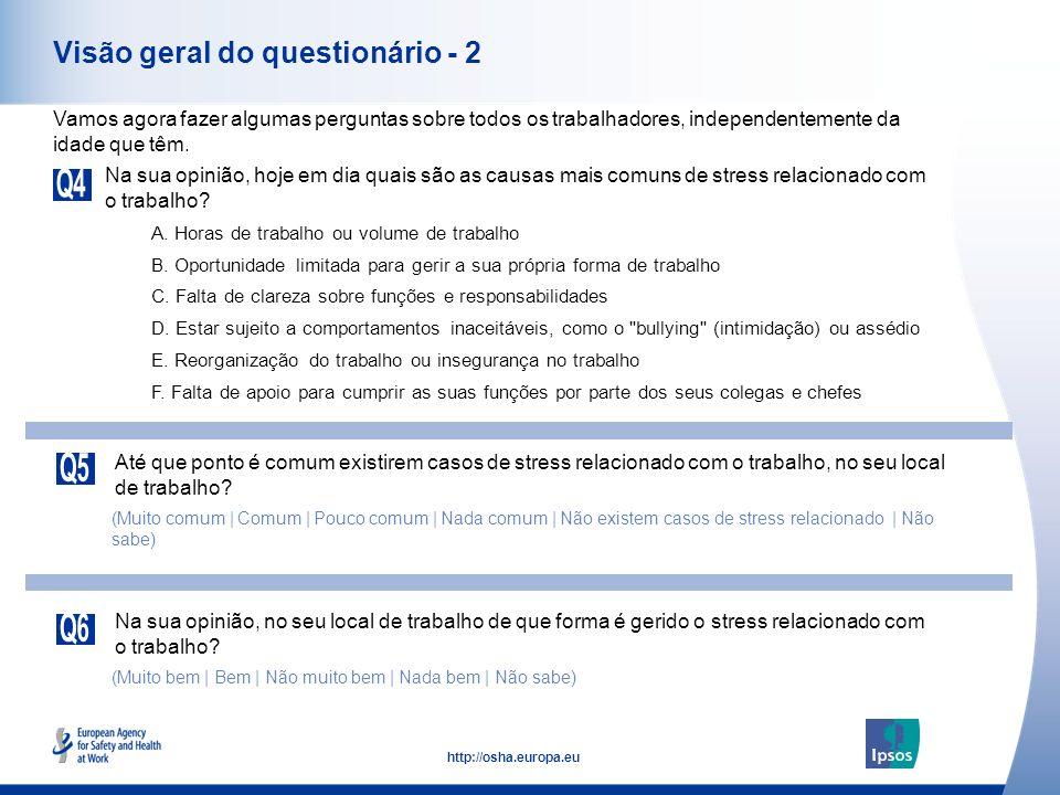 Visão geral do questionário - 2