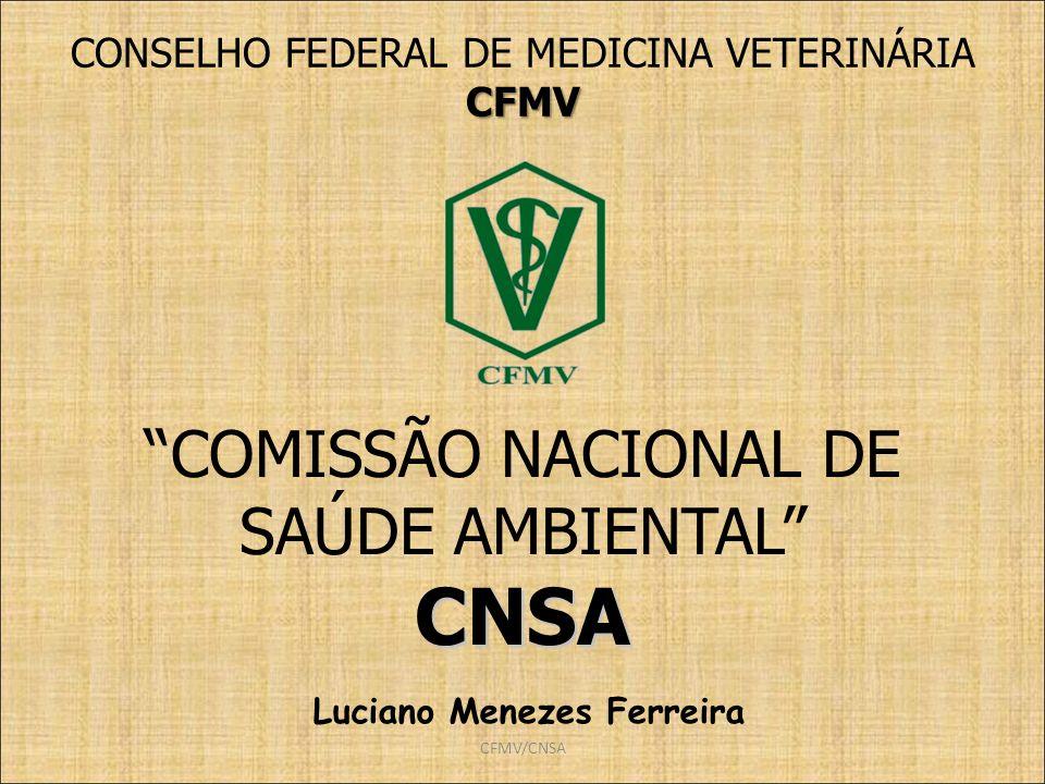 Luciano Menezes Ferreira