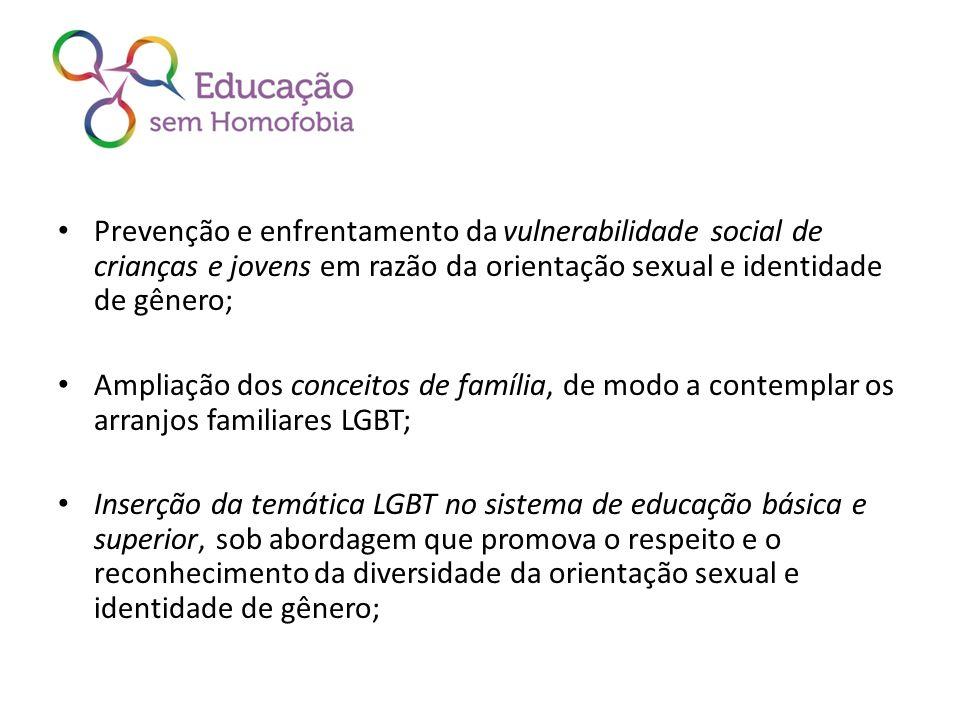 Prevenção e enfrentamento da vulnerabilidade social de crianças e jovens em razão da orientação sexual e identidade de gênero;
