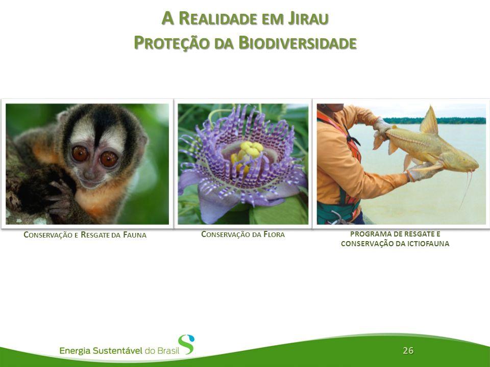 A Realidade em Jirau Proteção da Biodiversidade