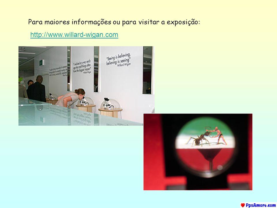 Para maiores informações ou para visitar a exposição: