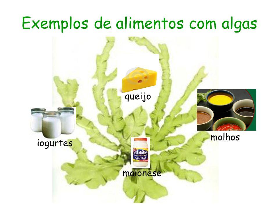 Exemplos de alimentos com algas