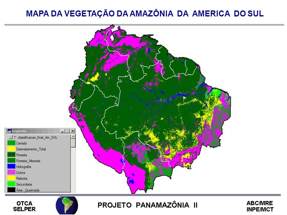 MAPA DA VEGETAÇÃO DA AMAZÔNIA DA AMERICA DO SUL