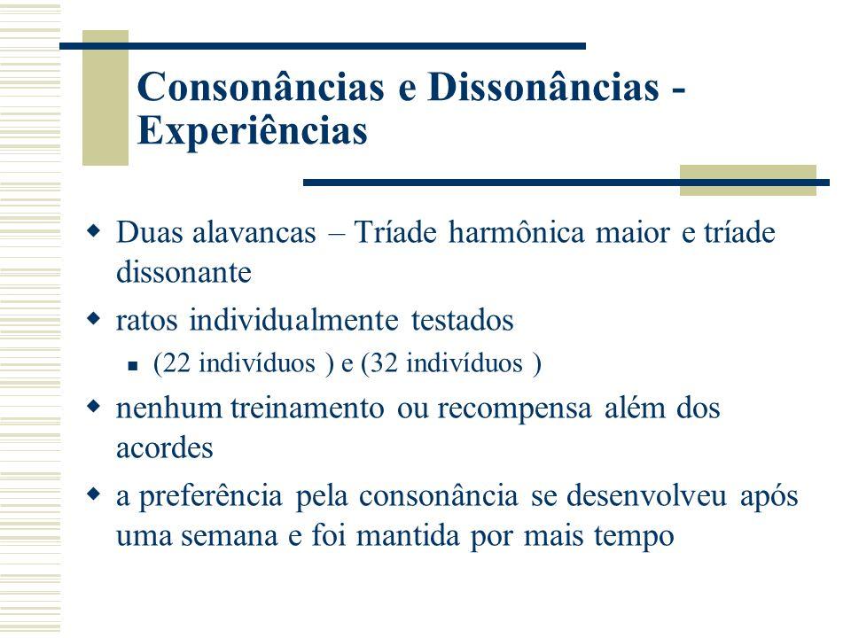 Consonâncias e Dissonâncias - Experiências