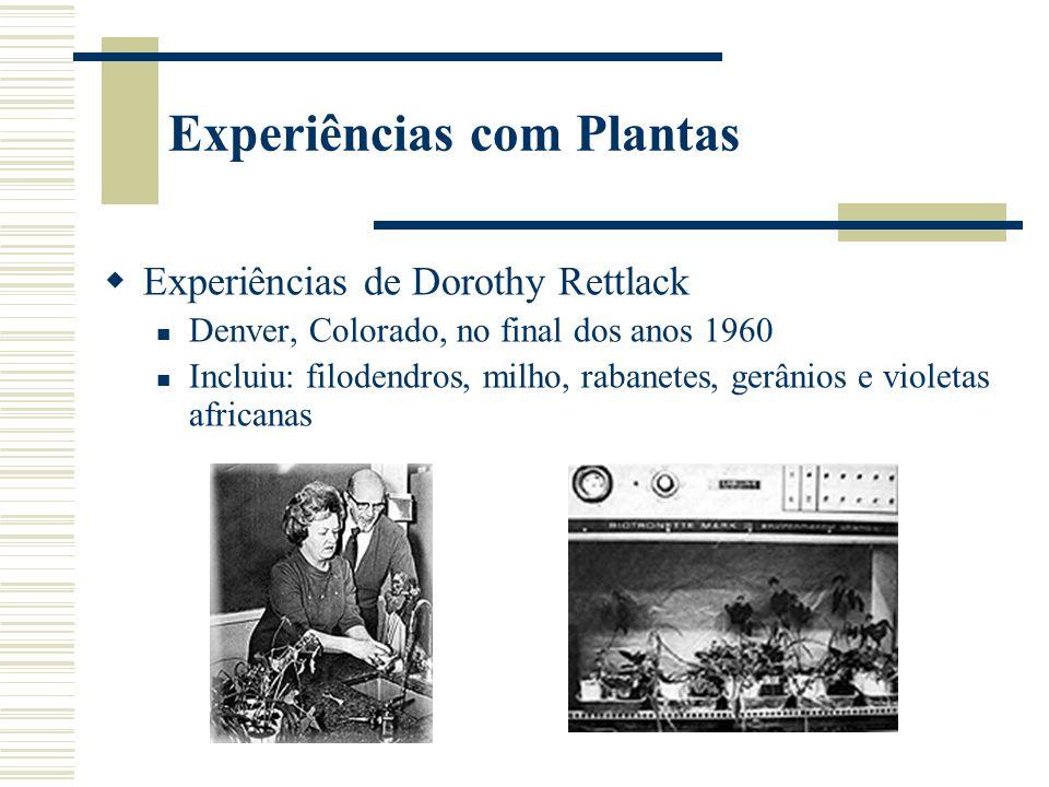 Experiências com Plantas