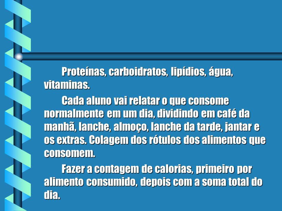 Proteínas, carboidratos, lipídios, água, vitaminas.