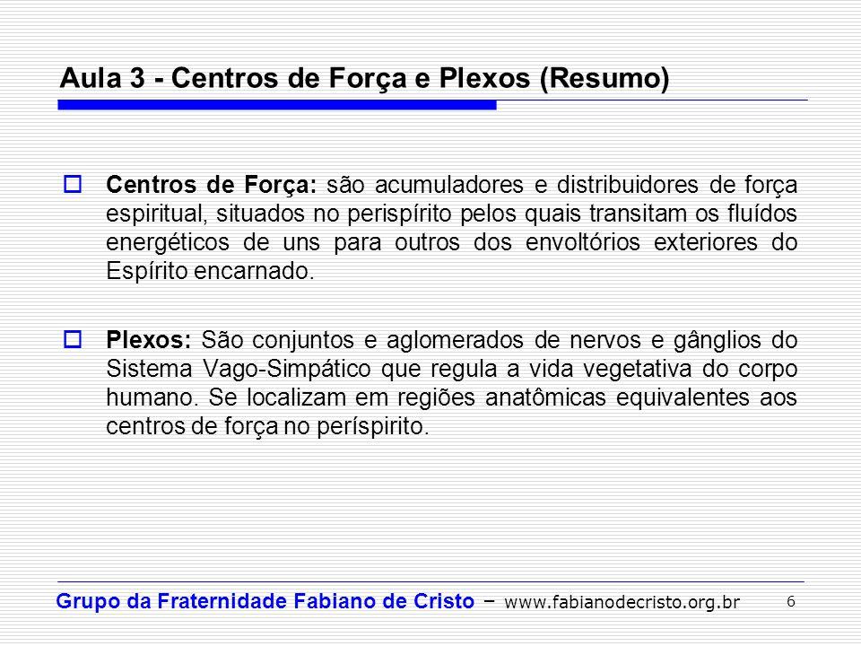 Aula 3 - Centros de Força e Plexos (Resumo)