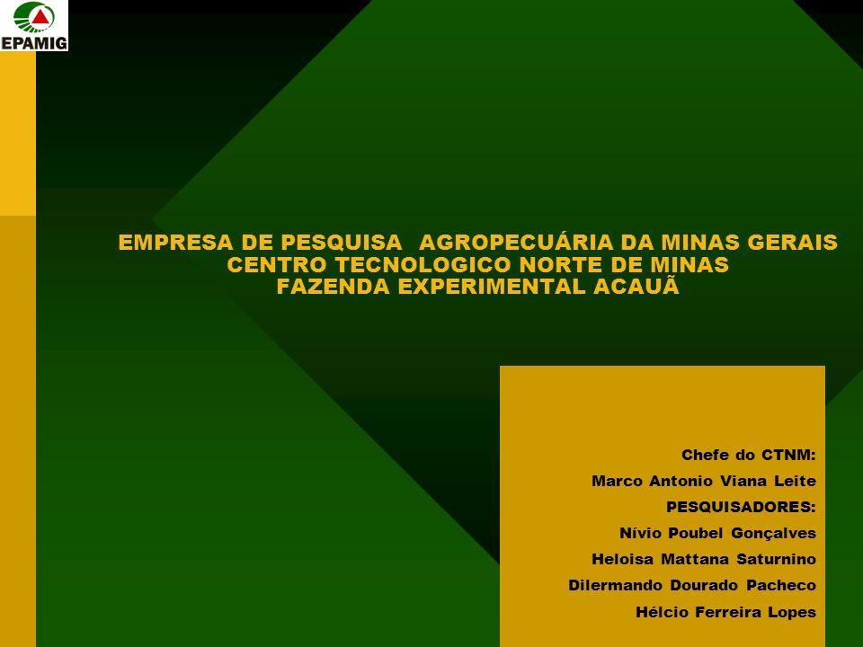 EMPRESA DE PESQUISA AGROPECUÁRIA DA MINAS GERAIS CENTRO TECNOLOGICO NORTE DE MINAS FAZENDA EXPERIMENTAL ACAUÃ