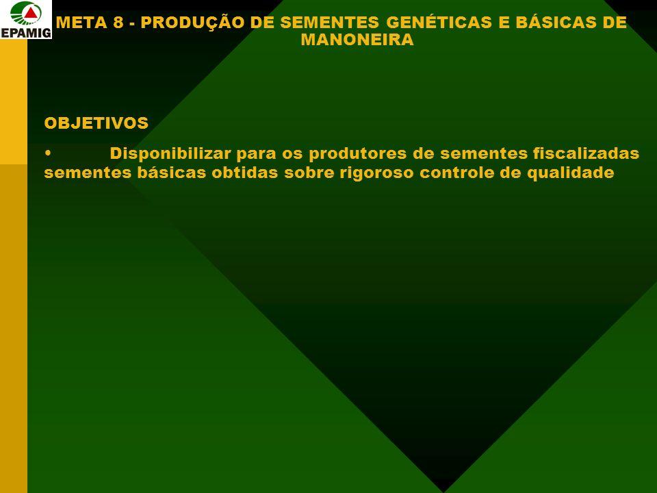 META 8 - PRODUÇÃO DE SEMENTES GENÉTICAS E BÁSICAS DE MANONEIRA