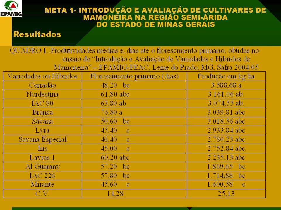 META 1- INTRODUÇÃO E AVALIAÇÃO DE CULTIVARES DE MAMONEIRA NA REGIÃO SEMI-ÁRIDA DO ESTADO DE MINAS GERAIS