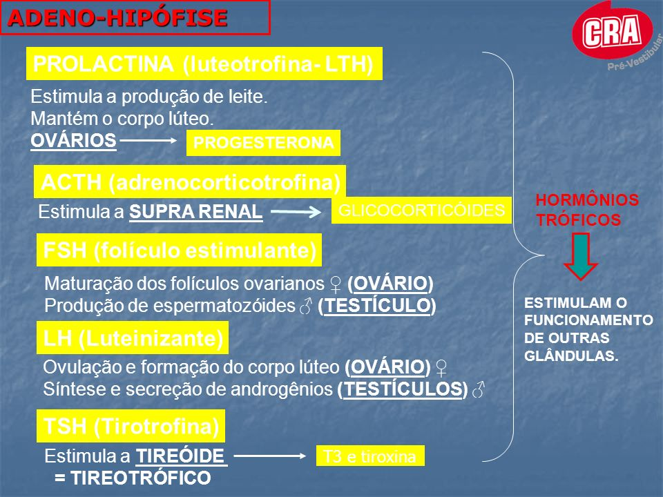 PROLACTINA (luteotrofina- LTH)