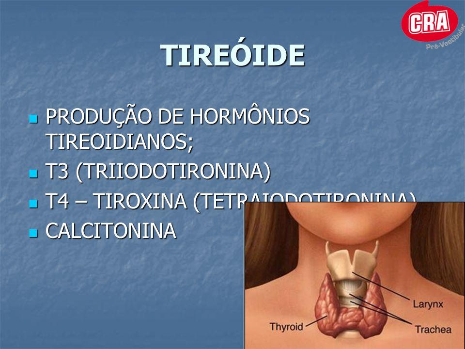 TIREÓIDE PRODUÇÃO DE HORMÔNIOS TIREOIDIANOS; T3 (TRIIODOTIRONINA)