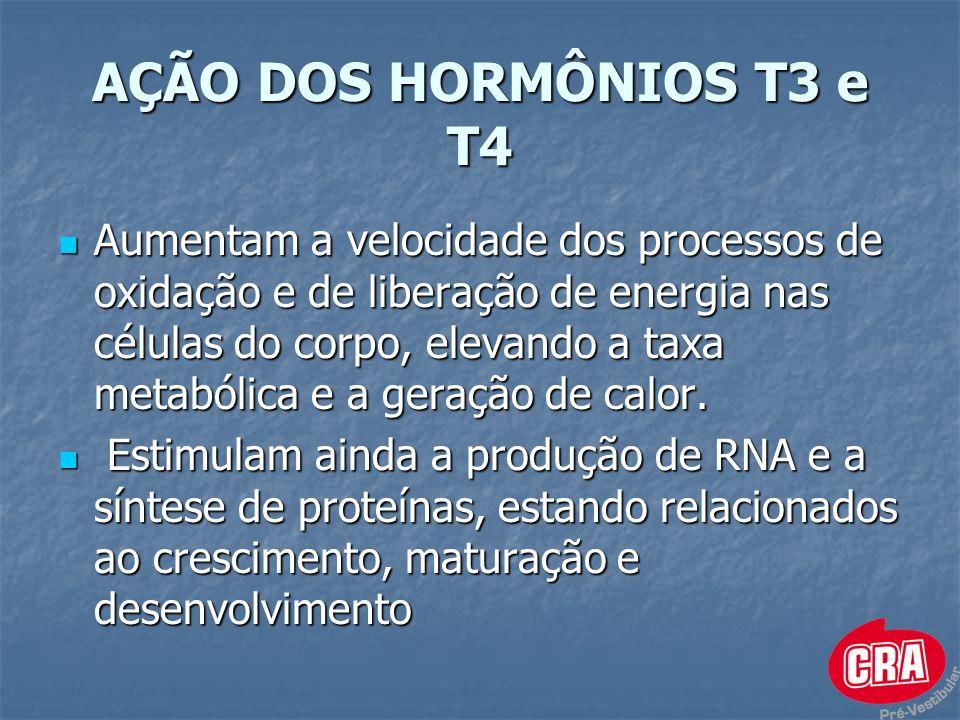 AÇÃO DOS HORMÔNIOS T3 e T4