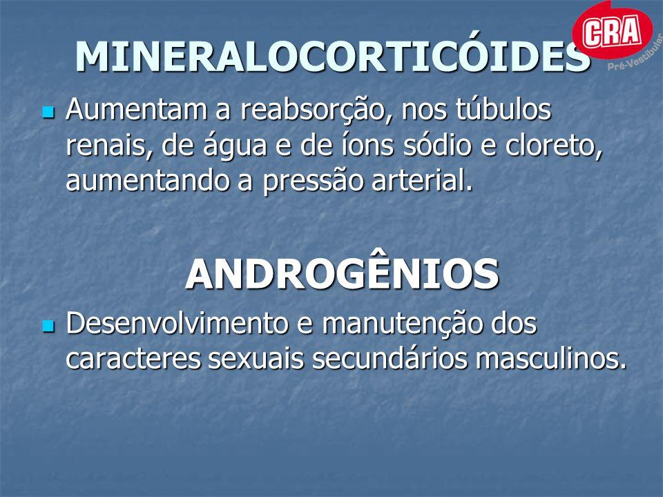 MINERALOCORTICÓIDES ANDROGÊNIOS