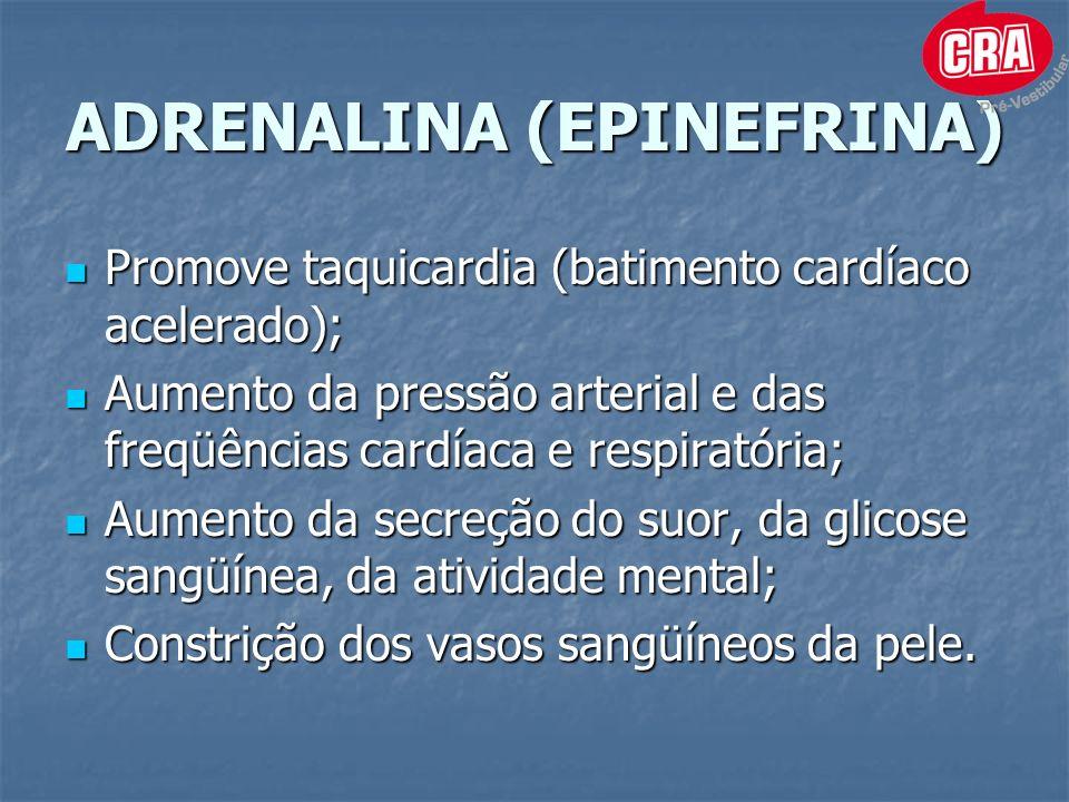 ADRENALINA (EPINEFRINA)