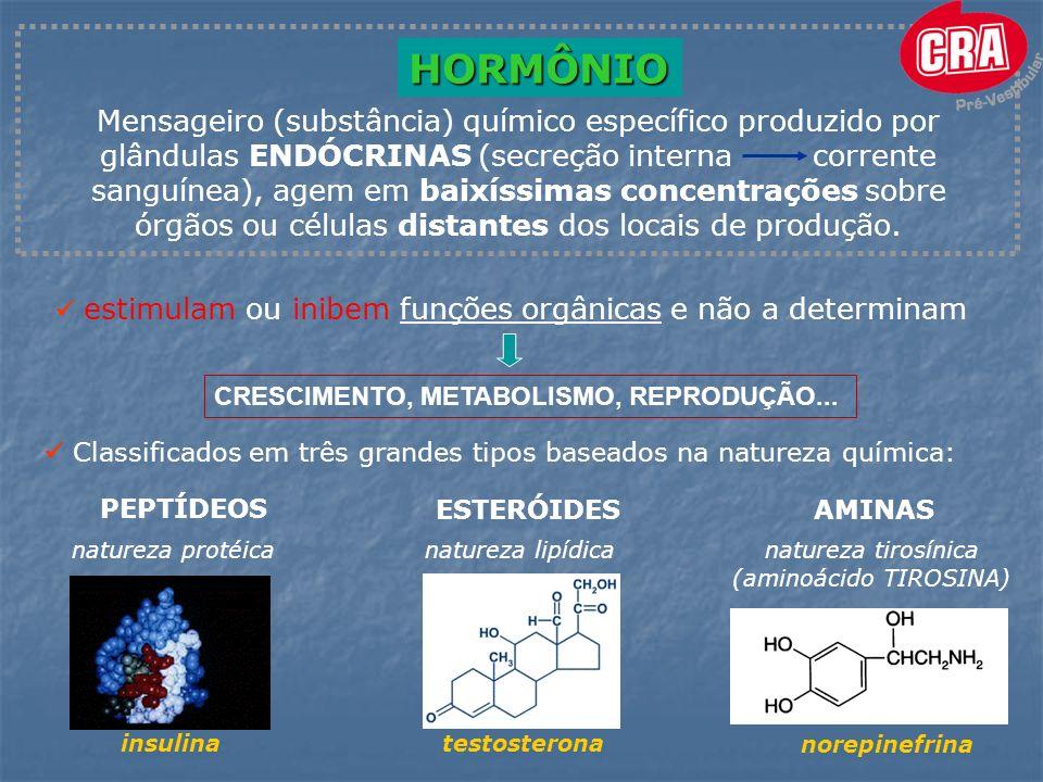 (aminoácido TIROSINA)