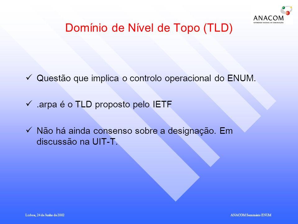 Domínio de Nível de Topo (TLD)