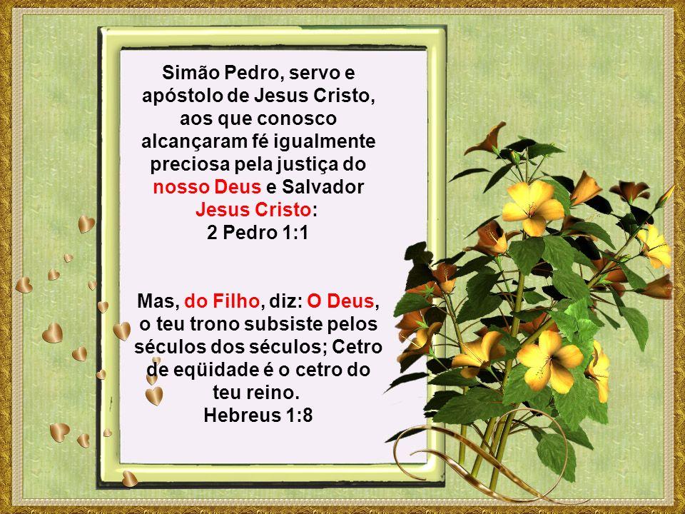 Simão Pedro, servo e apóstolo de Jesus Cristo, aos que conosco alcançaram fé igualmente preciosa pela justiça do nosso Deus e Salvador Jesus Cristo: 2 Pedro 1:1