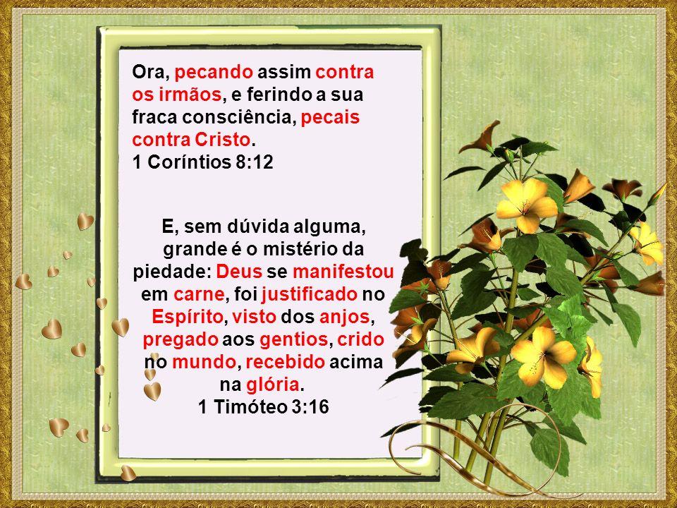 Ora, pecando assim contra os irmãos, e ferindo a sua fraca consciência, pecais contra Cristo. 1 Coríntios 8:12