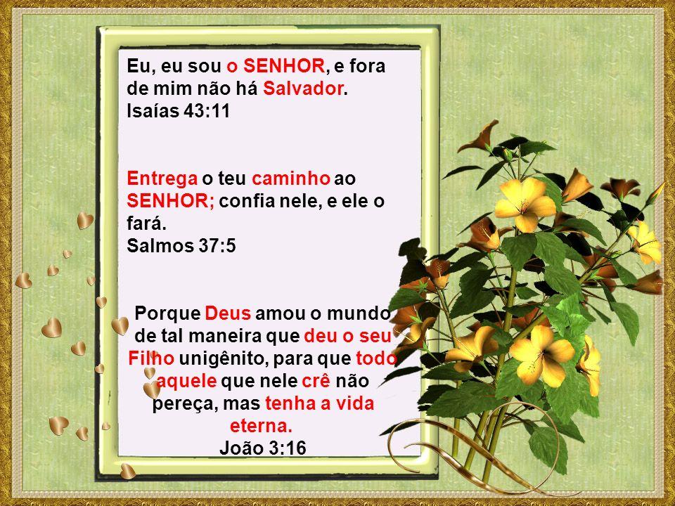 Eu, eu sou o SENHOR, e fora de mim não há Salvador. Isaías 43:11