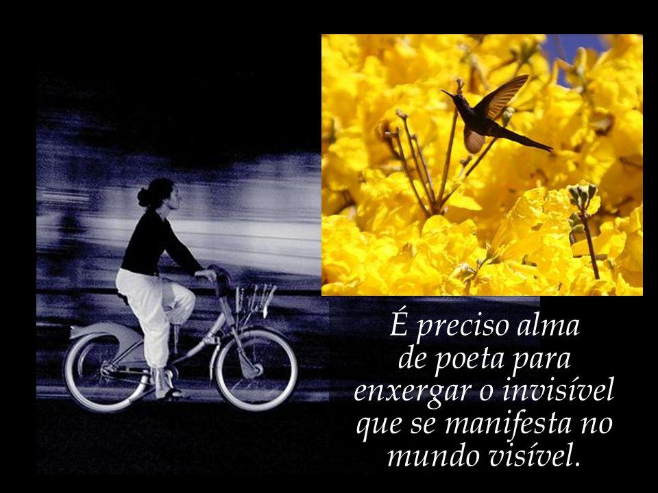 de poeta para enxergar o invisível que se manifesta no mundo visível.