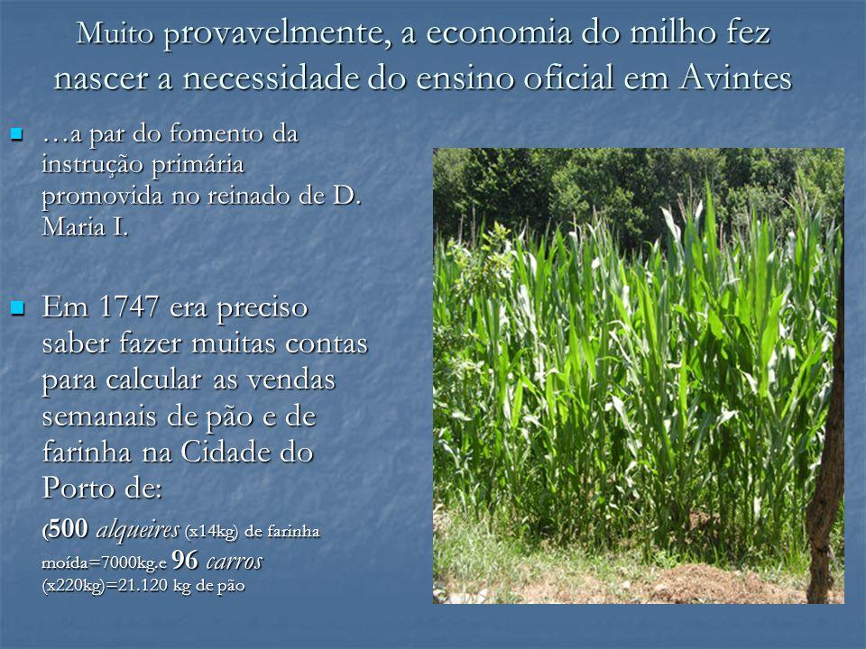 Muito provavelmente, a economia do milho fez nascer a necessidade do ensino oficial em Avintes