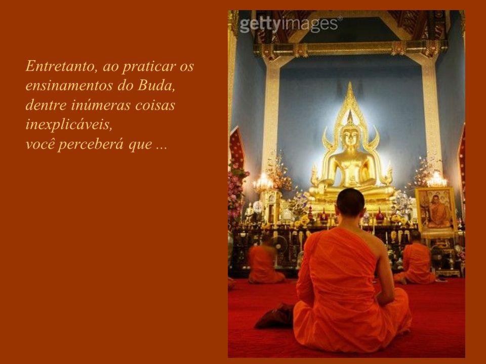 Entretanto, ao praticar os ensinamentos do Buda, dentre inúmeras coisas inexplicáveis, você perceberá que ...