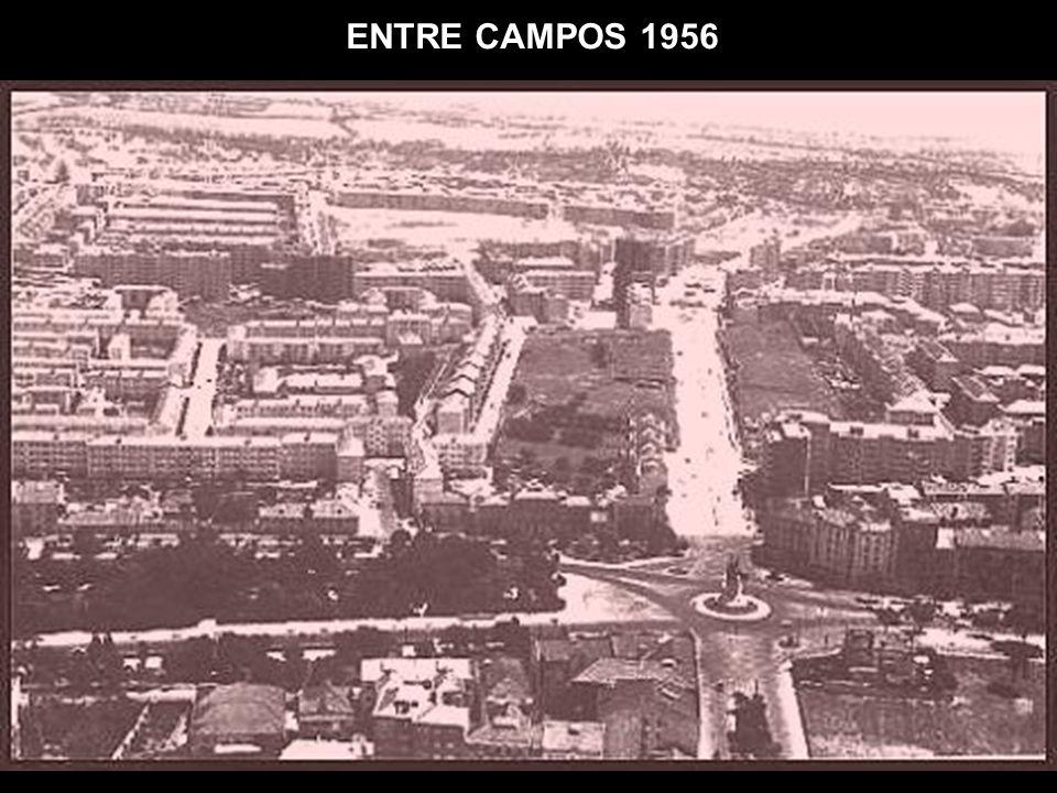 ENTRE CAMPOS 1956