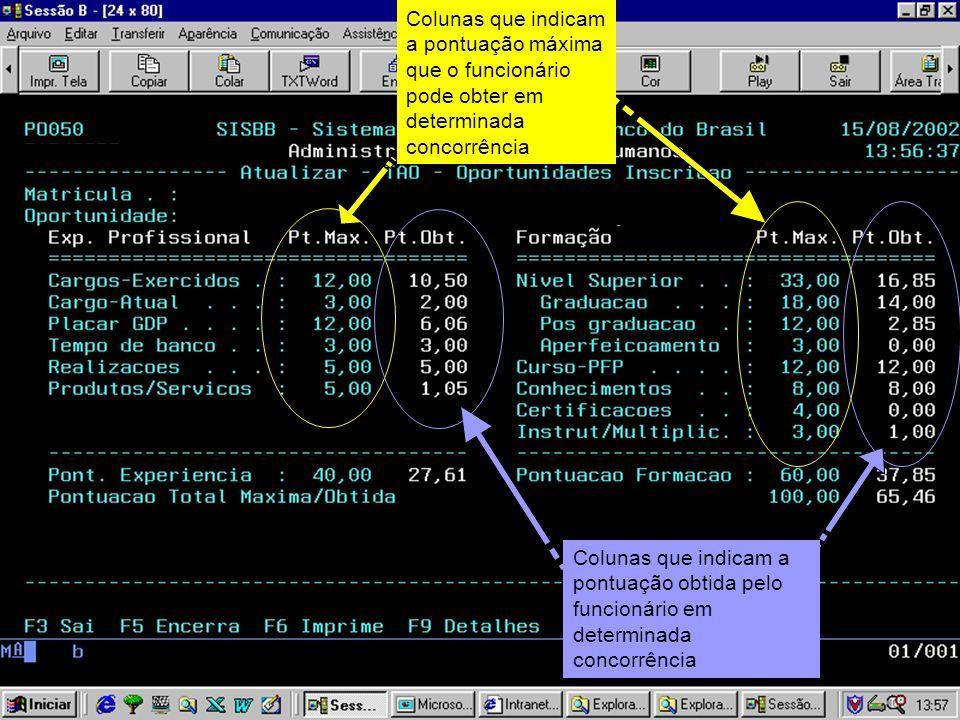 Colunas que indicam a pontuação máxima que o funcionário pode obter em determinada concorrência