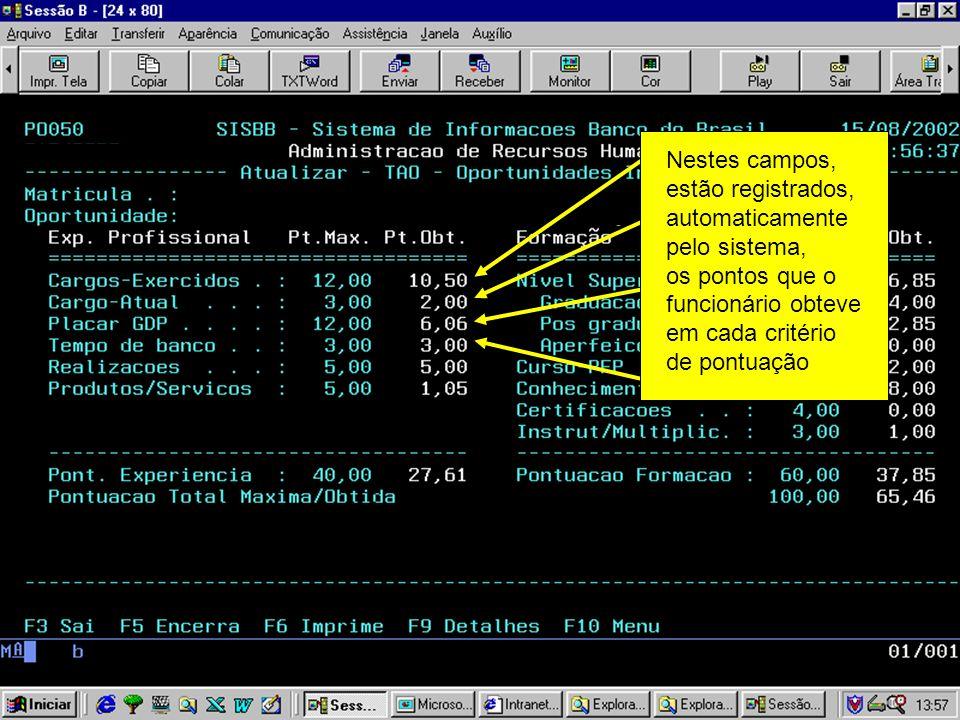 Nestes campos, estão registrados, automaticamente pelo sistema, os pontos que o funcionário obteve em cada critério de pontuação