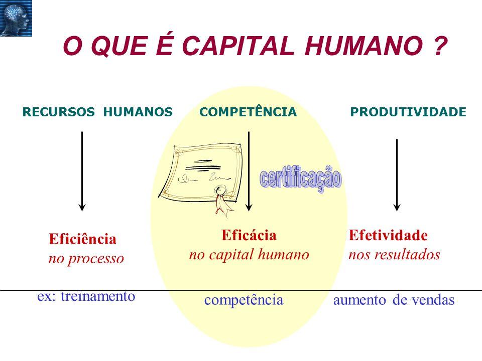 O QUE É CAPITAL HUMANO certificação Eficácia no capital humano