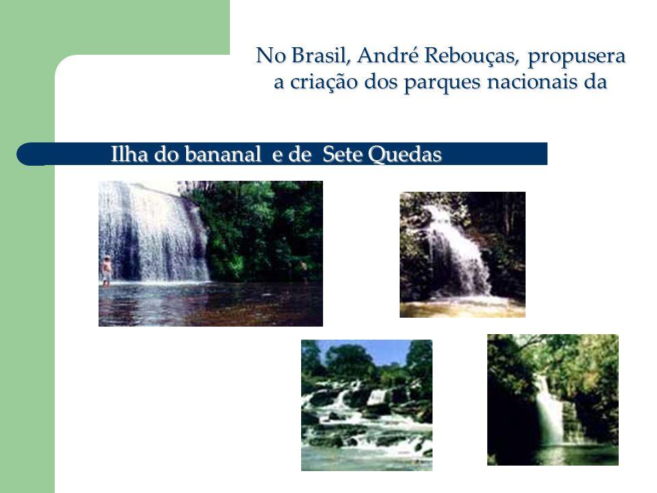 No Brasil, André Rebouças, propusera a criação dos parques nacionais da