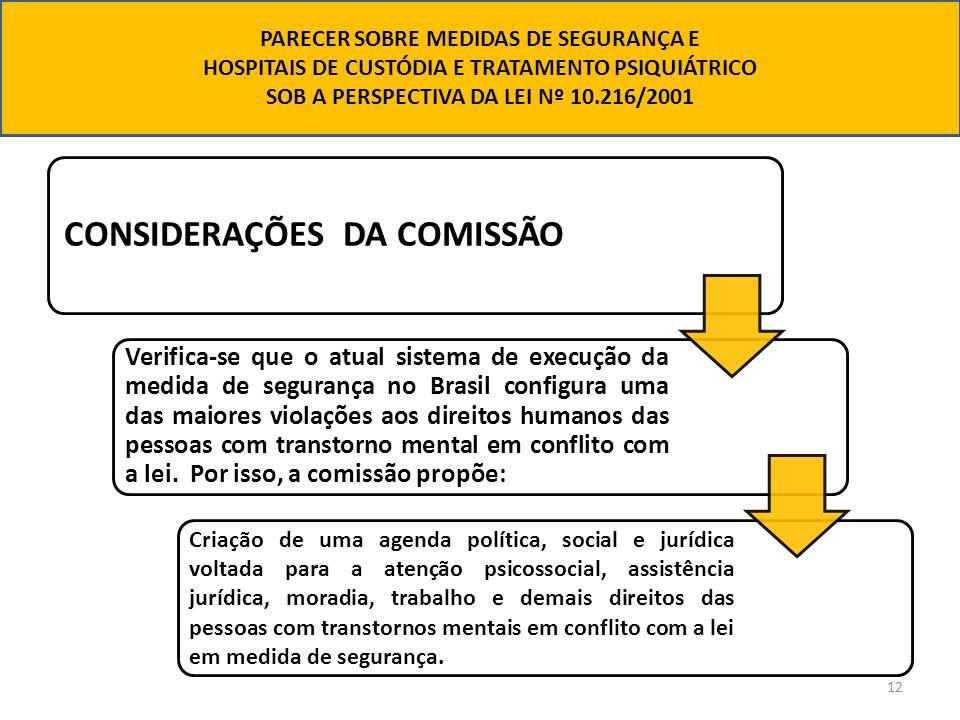 CONSIDERAÇÕES DA COMISSÃO
