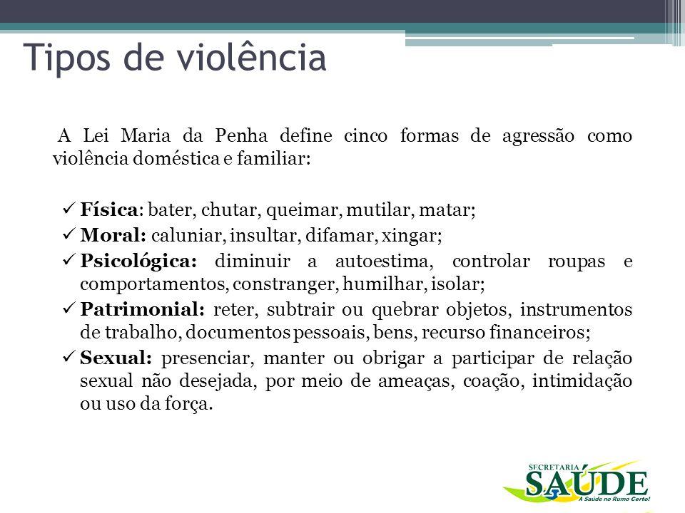 Tipos de violência A Lei Maria da Penha define cinco formas de agressão como violência doméstica e familiar: