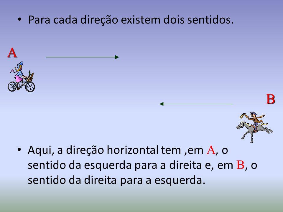 A B Para cada direção existem dois sentidos.