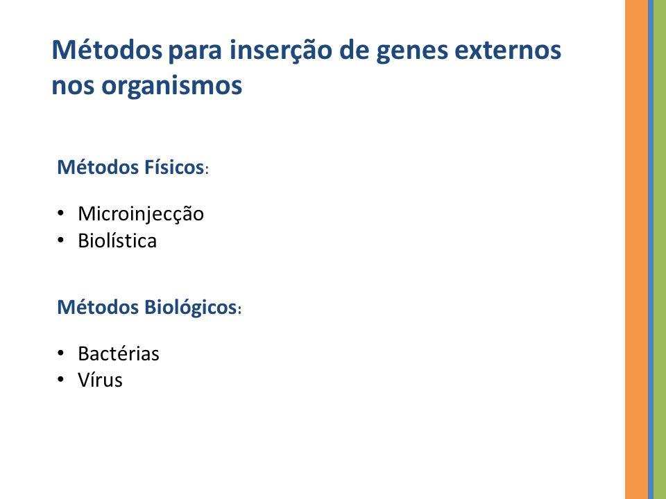 Métodos para inserção de genes externos nos organismos