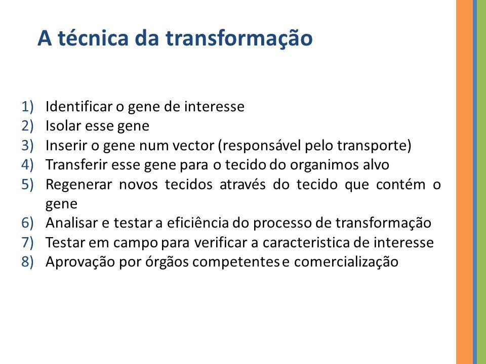 A técnica da transformação