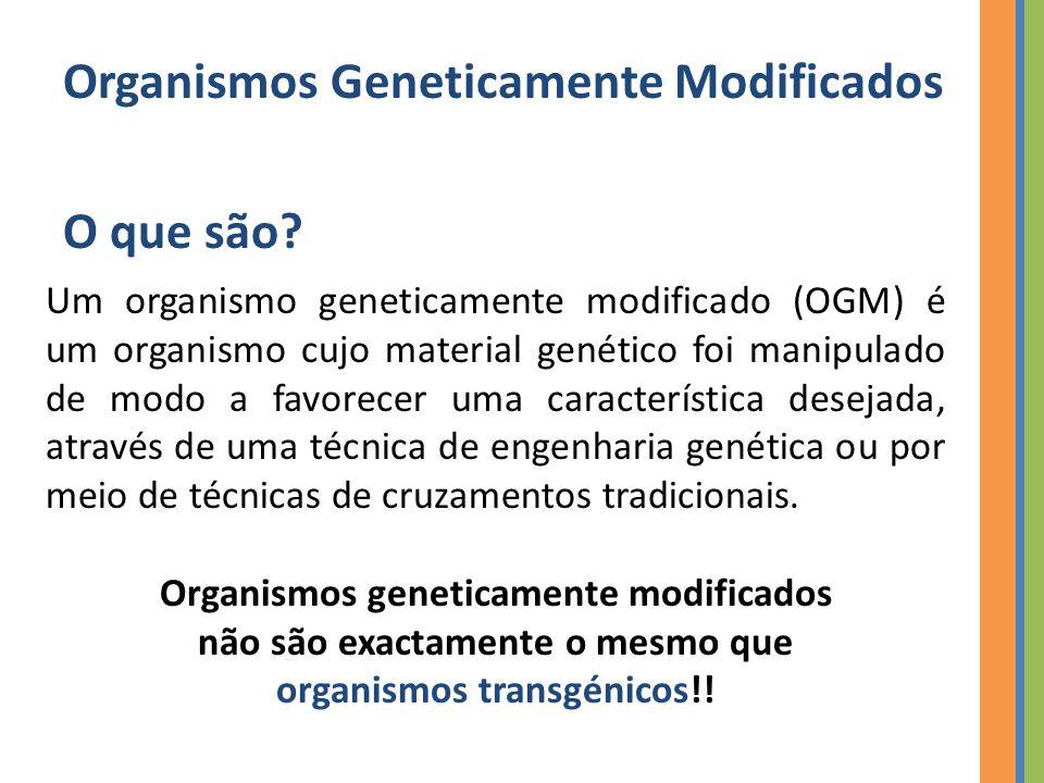 Organismos Geneticamente Modificados O que são