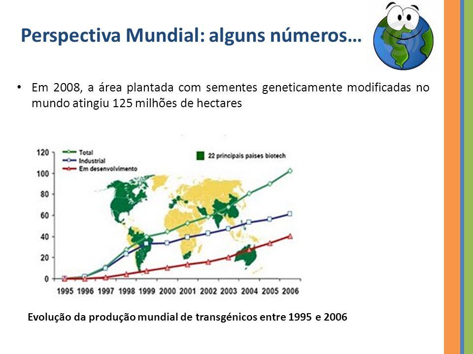 Evolução da produção mundial de transgénicos entre 1995 e 2006