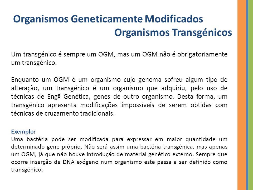 Organismos Geneticamente Modificados Organismos Transgénicos