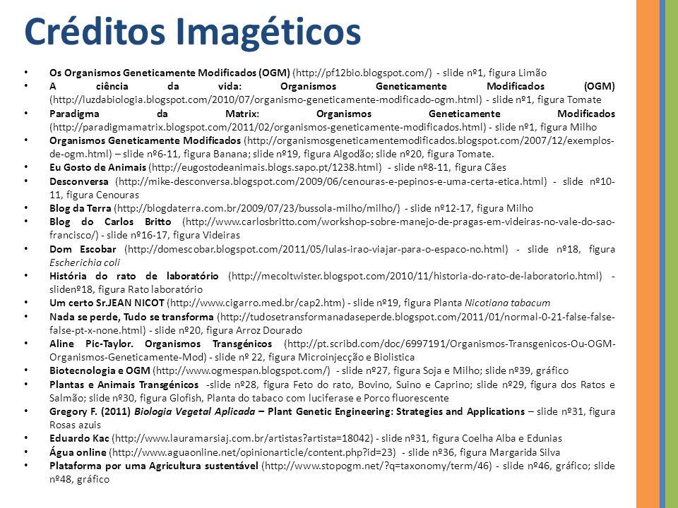 Créditos Imagéticos Os Organismos Geneticamente Modificados (OGM) (http://pf12bio.blogspot.com/) - slide nº1, figura Limão.