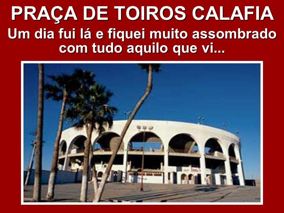 PRAÇA DE TOIROS CALAFIA
